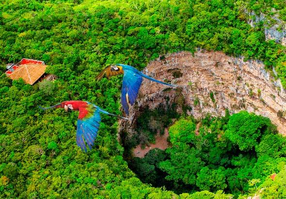 VM Viajar® por Chiapas 4 días   Viajes a Chiapas México   Paquetes a Chiapas
